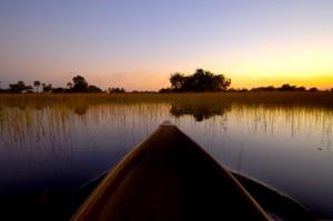 Okavango Dusk Cruise Jpg